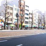 「お城下マルシェin花園」松山市駅と堀之内を結ぶ花園町通り(長さ約250メートル)